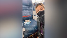 Home for Christmas: Delta flight attendant hopes to reunite lost stuffed cat with owner