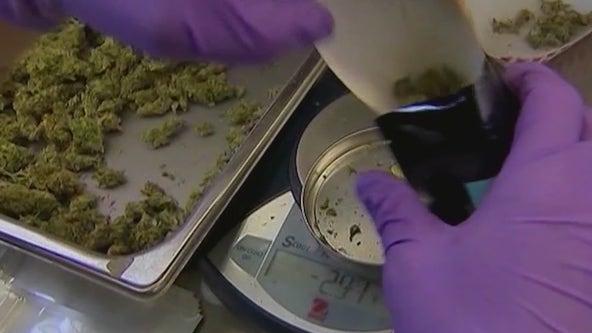 Rep. Sheila Jackson Lee had major role in U.S. House passing marijuana bill