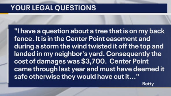 Your Legal Questions - Get money back from scam; damages from tree;
