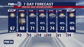 Houston-area weather forecast; January 17th