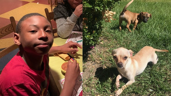 12-year-old boy, dog reported missing in SE Houston