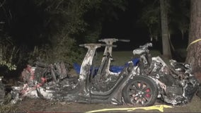 Anesthesiologist killed in Tesla crash was 'pillar of The Woodlands'