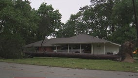 Storm takes down trees, power lines in Montgomery County