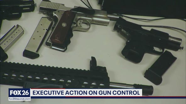 Executive action gun control - What's Your Point?