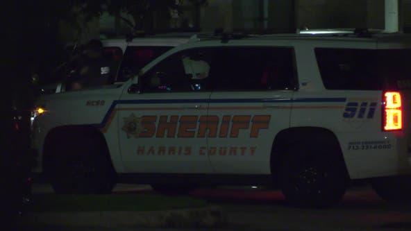 HCSO: Woman shot man in the leg during domestic dispute