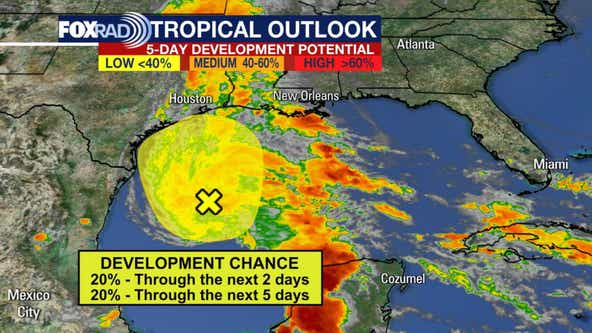 Disturbance in Gulf of Mexico currently at 20% risk of formation