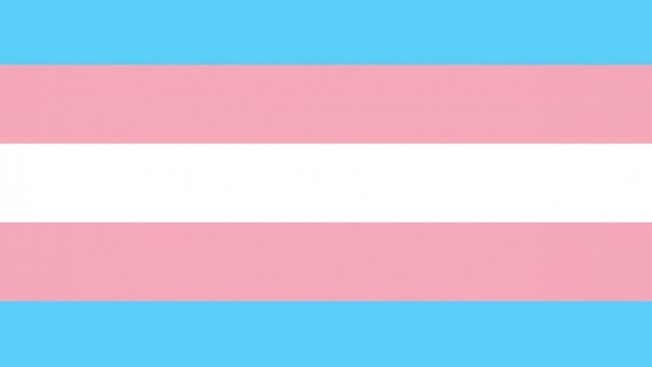 transgender-flag.jpeg