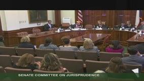 Reaction positive after Texas Senate passes SB 6