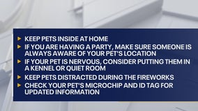 Fireworks safety reminders for pet owners and neighbors