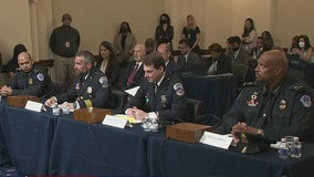 Moving testimony from the men who defended the Capitol- What's Your Point?