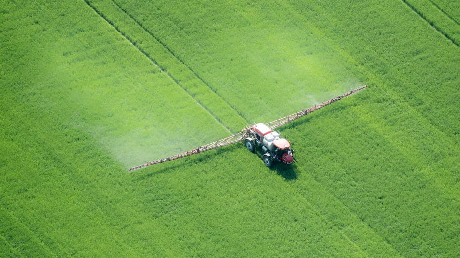 Aerial of spray application in green agricultural field on the eastern shore of Maryland, USA
