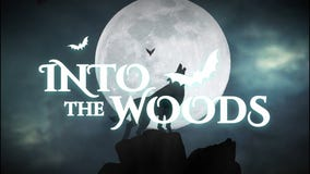 The Woodlands Charities hosting Halloween party to raise funds for 5 nonprofits