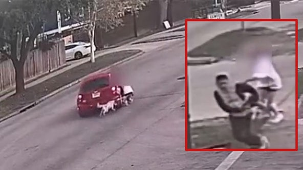 VIDEO: Woman, dog dragged during purse snatching in Houston