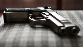 Plan to boost red flag gun laws gain momentum in Congress