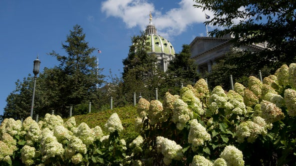Pa. Senate vote puts victims' rights amendment before voters
