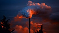 Medical groups warn climate change is a 'health emergency'