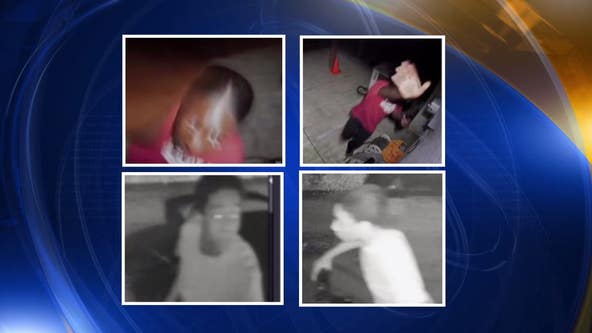 Woman accused of stealing security cameras in Upper Darby