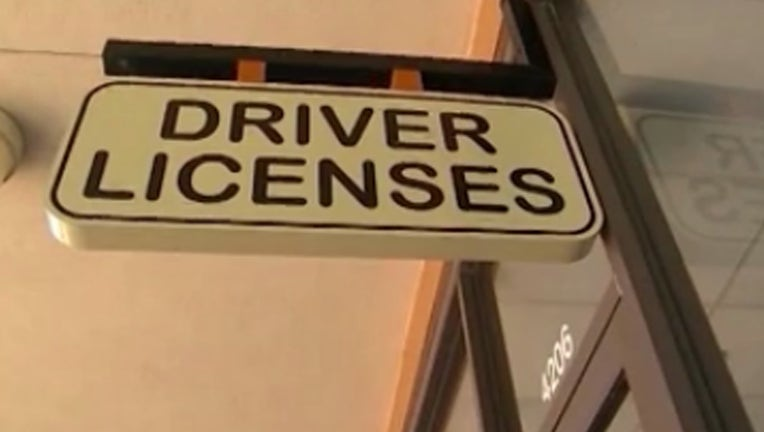 driver licenses
