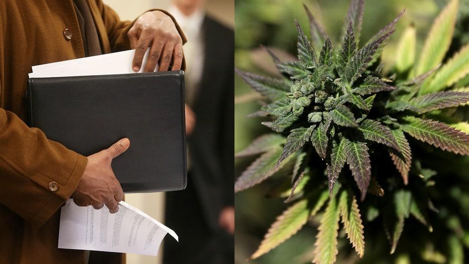 A file photo of an applicant at a job fair, alongside a marijuana plant.