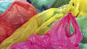 New Jersey takes up ban on plastic, paper bags after bill stalled