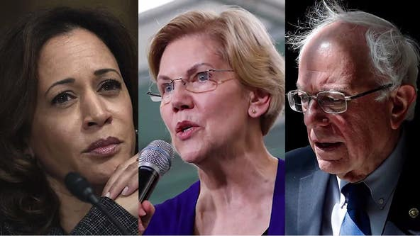 In crowded 2020 Democratic field, a clear top tier emerges
