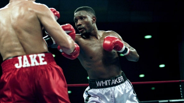 Boxing great Pernell 'Sweet Pea' Whitaker killed after being hit by car