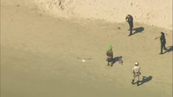 Man in Halloween mask arrested after leading authorities on wild chase through LA