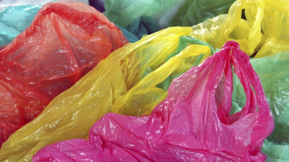 New Jersey advances bill banning single-use plastic, paper bags