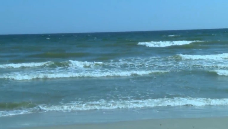 An 18-year-old surfer was bitten in New Smyrna Beach, Florida.
