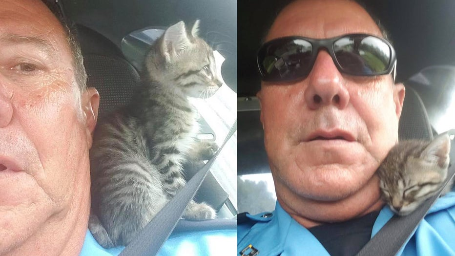 "Lafourche Parish Sheriff's Deputy Harry Guillot is pictured with ""Crash,"" a 4-week-old kitten who was found July 11 in a crashed car in Louisiana. (Photo credit: Lafourche Parish Sheriff's Office)"