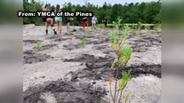 ATV riders destroy 400 trees planted by group of teens in N.J.