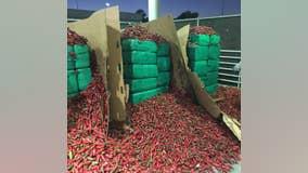 CBP officers seize $2.3 million worth of marijuana inside shipment of jalapeño peppers