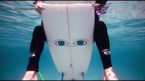 Surfers using 'big eye' stickers on boards to prevent shark attacks