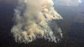 France threatens economic retaliation over Amazon fires