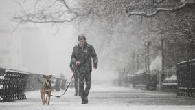 'Polar Coaster Winter': Farmers' Almanac predicts intense cold, snowfall to come in 2019-20
