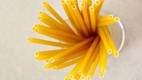Pasta straws are the newest alternative to plastic
