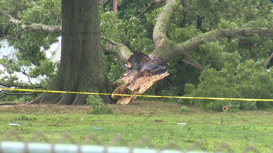Lightning strikes a tree, which falls on a tent with people inside at Bucks County swim club.