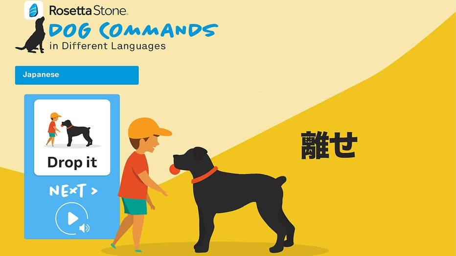 Rosetta Stone has created a language program to learn dog commands in 23 different languages.