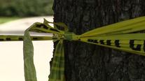 Autopsies slated on man, woman found dead in Lehigh County home