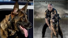 Evesham Township Police K-9 passes away after sudden illness
