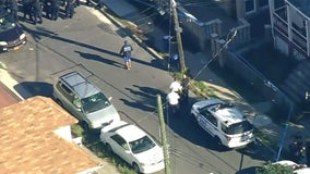 NYPD officer shot; domestic violence suspect shot dead