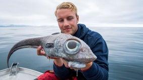 Fisherman catches strange, 'dinosaur-like' creature