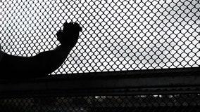 Separated migrant children suffered trauma, US watchdog says