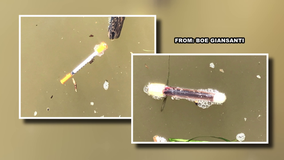 Syringe and blood-filled vial found found floating in Delaware River
