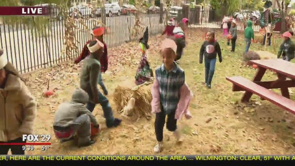 School worker sets up pumpkin patch for students