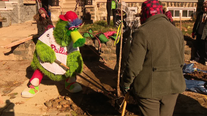 Phillie Phanatic joined by volunteers to plant trees in West Philadelphia