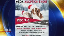 Brandywine SPCA to host mega adoption event