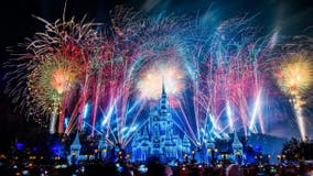 Disney World to live stream New Year's Eve fireworks show from Magic Kingdom