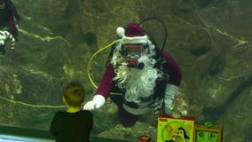 Scuba Santa brings underwater holiday cheer at Adventure Aquarium