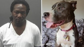 New Jersey man who left caged dog to drown convicted on cruelty count